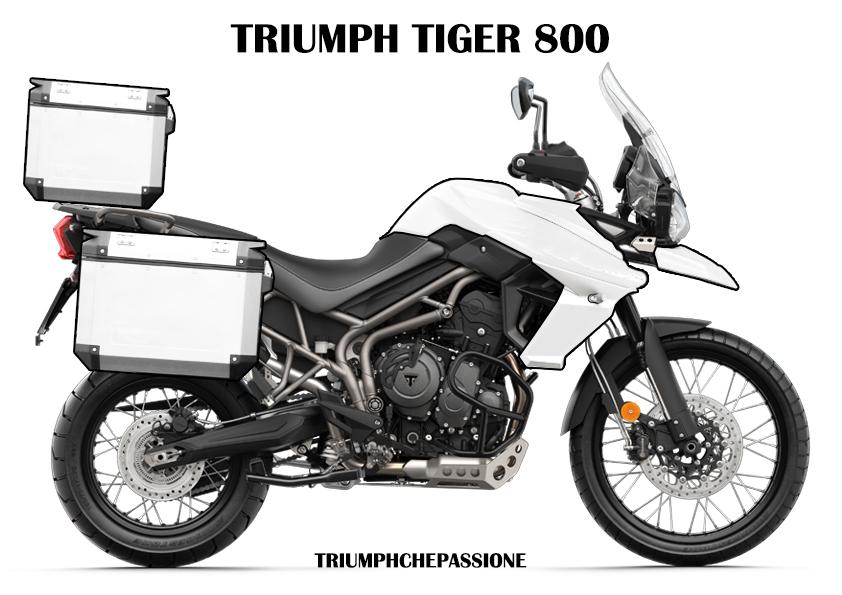 Colora la tua Triumph Tiger 800